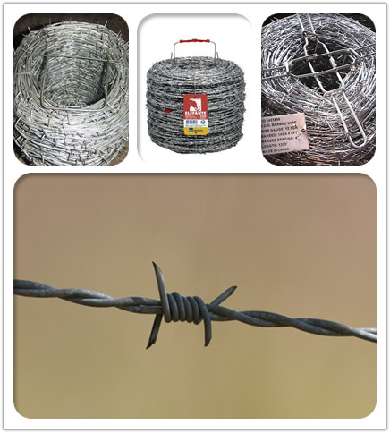 Reverse twisted barbed wire