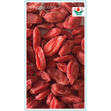 Chinese Dried Goji Berries/Wolfberries Price Best