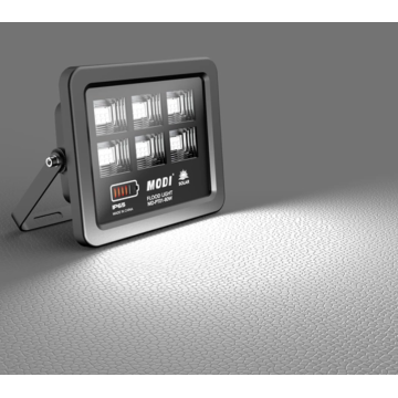 Motion sensor floodlight with remote control