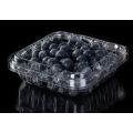 plastic clamshell blueberry fruit container with holes