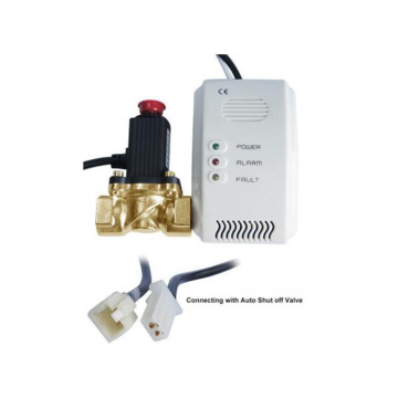 DC power supply network combustible gas detector