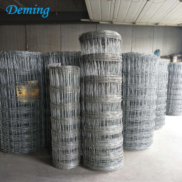 Factory Galvanized Fixed Knot Field Fence for Sale