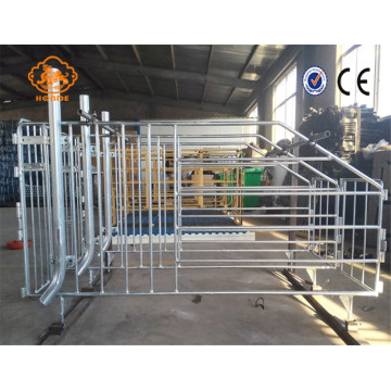 Modern automatic husbandry swine farm equipment nursery pen
