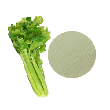 Best organic celery juice powder