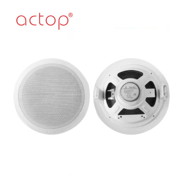 OEM Background Music Speakers for Smart Hotel