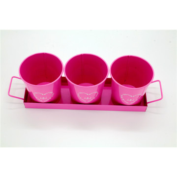 Tray With Flowers Pot Set