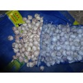 New Crop 2020 Normal White Garlic Size 4.5cm