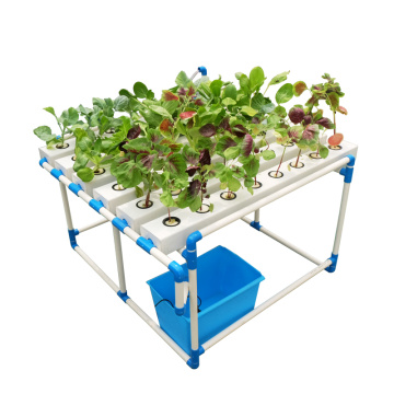 Complete Large Flat Hydroponics With Soilless Planting Tube