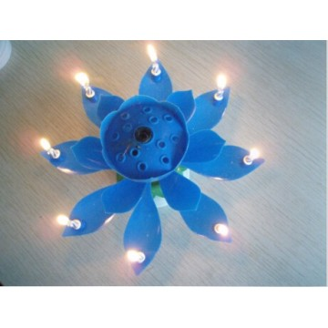 Flower Music Candle Cake Use Birthday Candle