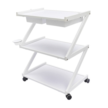 Beauty Salon Trolley Storage Cart
