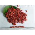 Ningxia New Harvest Hot sale Chinese goji berry