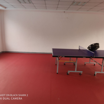 Table tennis sports floor with ITTF certificate