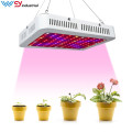 Hottest kind led grow light 1000w