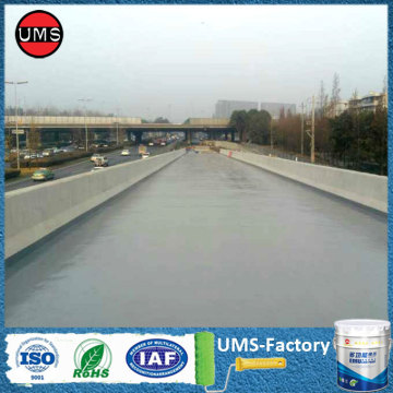 Polyurea bridge coating life expectancy 50 years