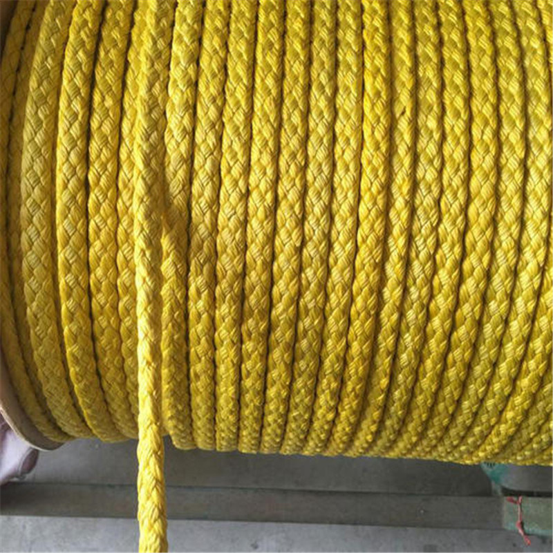 Polyester Carrier Rope For Paper Machine 3