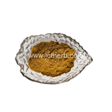 Sea Buckthorn Extract Powder Hippophae Rhamnoides Powder