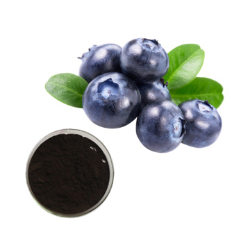 Natural Color vaccinium myrtillus extract