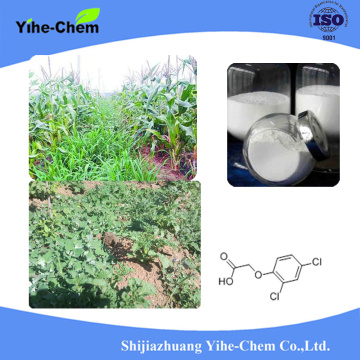 herbicide 2 4-D Dimethylamine salt