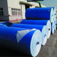 Big roll azul tarp PE
