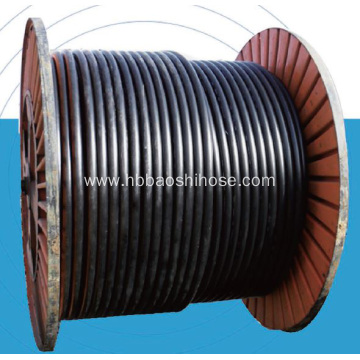 Steel Braided Composite Pipeline RTP
