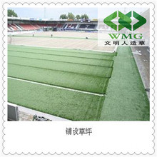 Football Diamond Monofilament Synthetic Turf