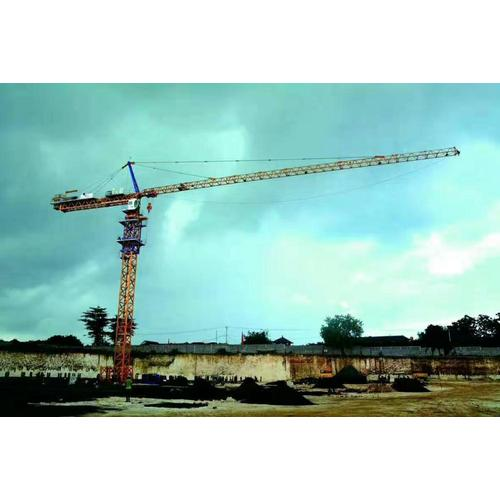how much does a tower crane  service