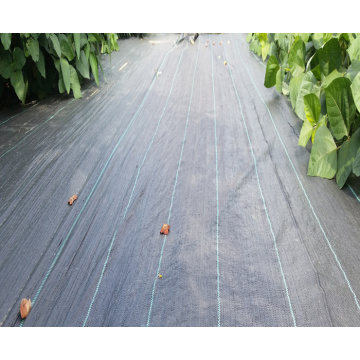 black plastic PP ground cover