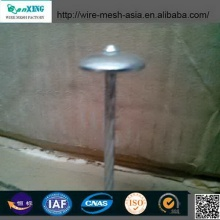 Low Price Galvanized Roofing Nail Common Nail