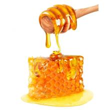 bulk sale fresh liden honey new crop
