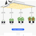Professional LED Grow Lights for Greenhouse