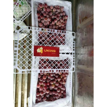 fresh xinjiang good quality red grape