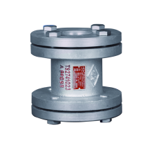 YRN-30C Flange type Check Valve for Ammonia