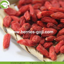 Factory Hot Sale Dried Tibet Goji Berries
