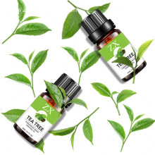 pure natural tea tree oil for acne treatment