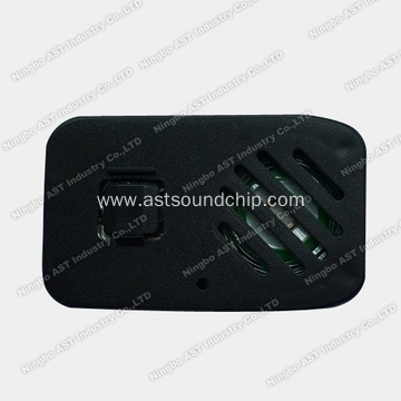 Ultrathin Voice Recorder, Sound Module
