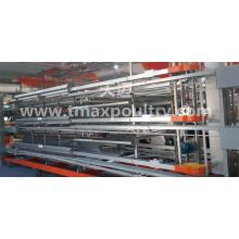 H type Broiler Chicken Equipment