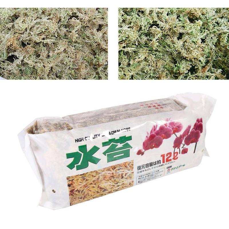 12L Sphagnum Moss Moss Sphagnum Nutrition Organic Fertilizer For Orchid Phalaenopsis Musgo Sphagnum Flower Garden Supplies