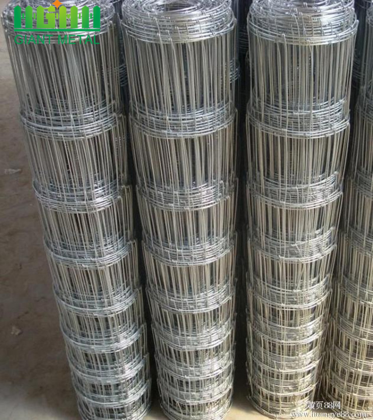 Cheaper Metal Galvanized Field Fence