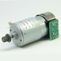 FM-165K-7PL1-CF Carbon Brush Motor - MAINTEX