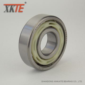Bearing For Bulk Material Processing Conveyor Idler