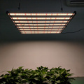 Samsung Lm301b 640w Grow Lamp for Greenhouse