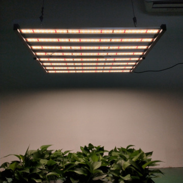 Samsung Lm301b Grow Lamp for Greenhouse