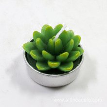 Decor Succulent tea light candles Wholesale