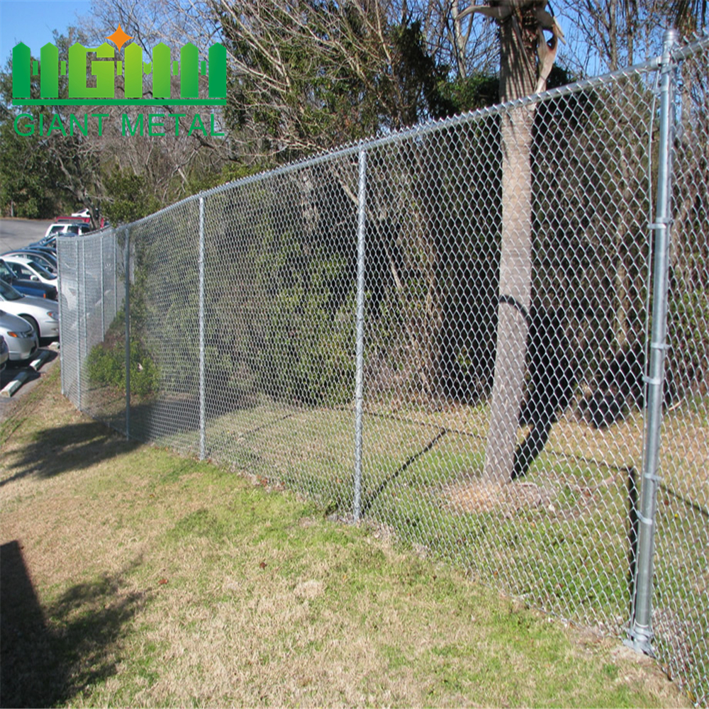 PVC Coated Common Used Chain Link Fence