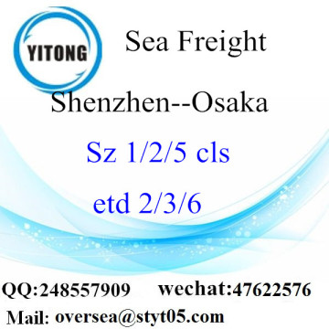 Shenzhen Port LCL Consolidation To Osaka