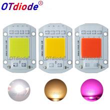 Smart IC AC COB LED Strip 20W 30W 50W 110V 220V Driverless DIY Flood Light Hight power LED COB Diode Warm white full spectrum