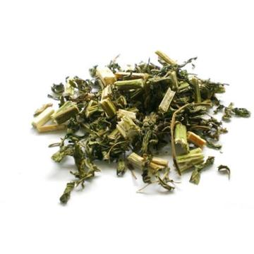 Top Quality Herba Leonuri
