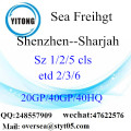 Shenzhen Port Sea Freight Shipping To Sharjah