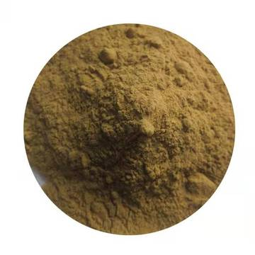 100% Natural Plant Green Coffee Bean Extract