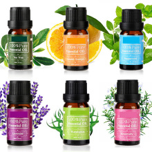 Private label 6pcs/set 100% pure aromatherapy essential oil